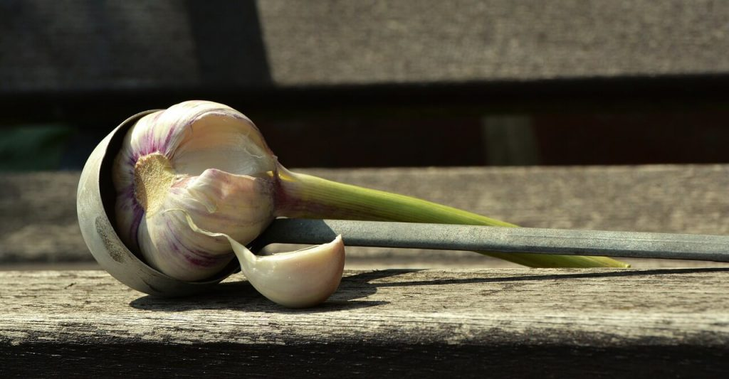 15-best-foods-for-a-healthy-heart-garlic