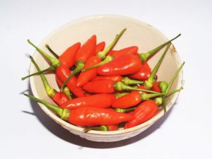 capsaicin-weight-loss-patches