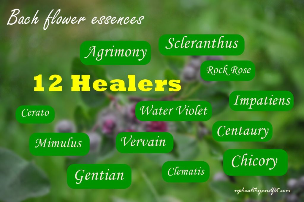 bach-flower-essences-12-healers
