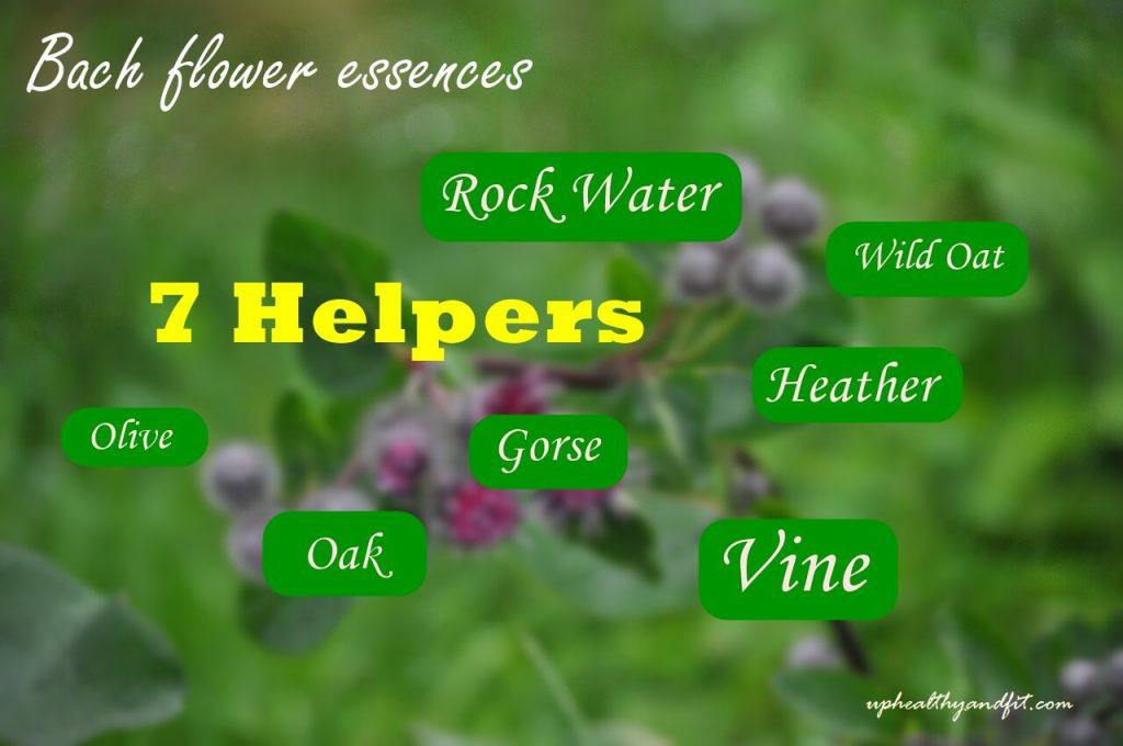 bach-flower-essences-7-helpers
