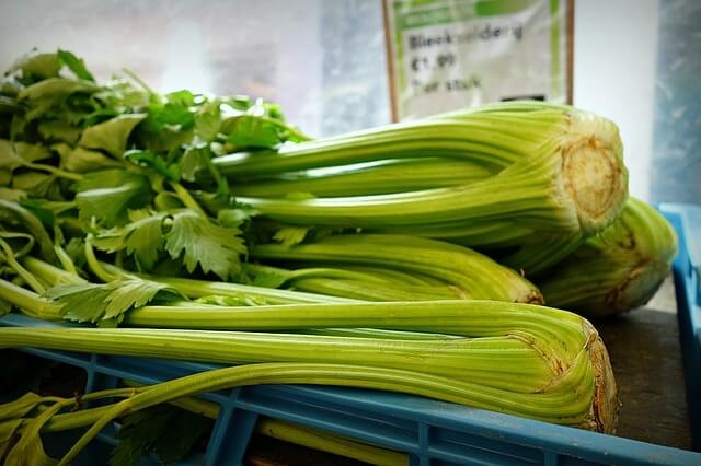 best-foods-to-naturally-detox-your-body-celery