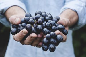 grapes-best-foods-for-a-good-brain-health