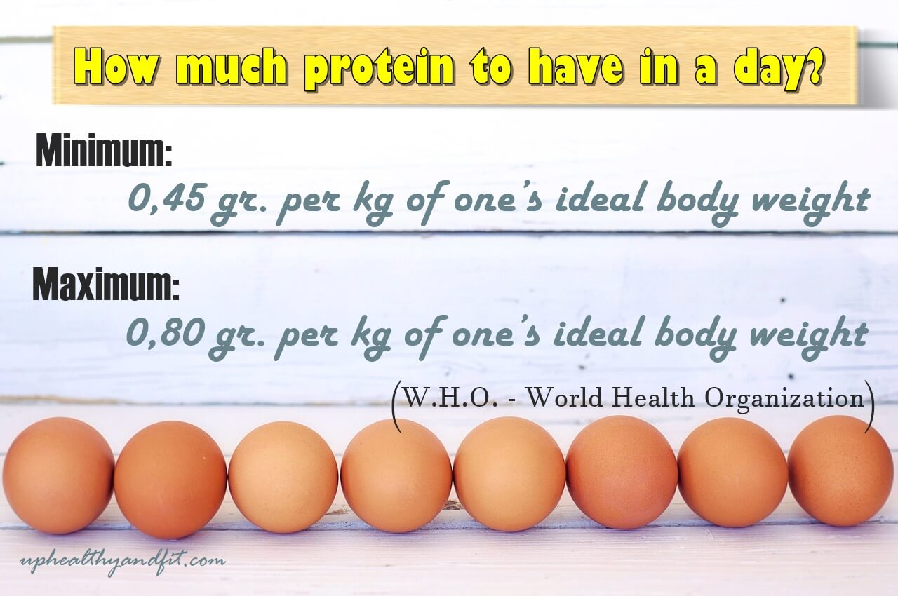 how-much-protein-to-have-in-a-day