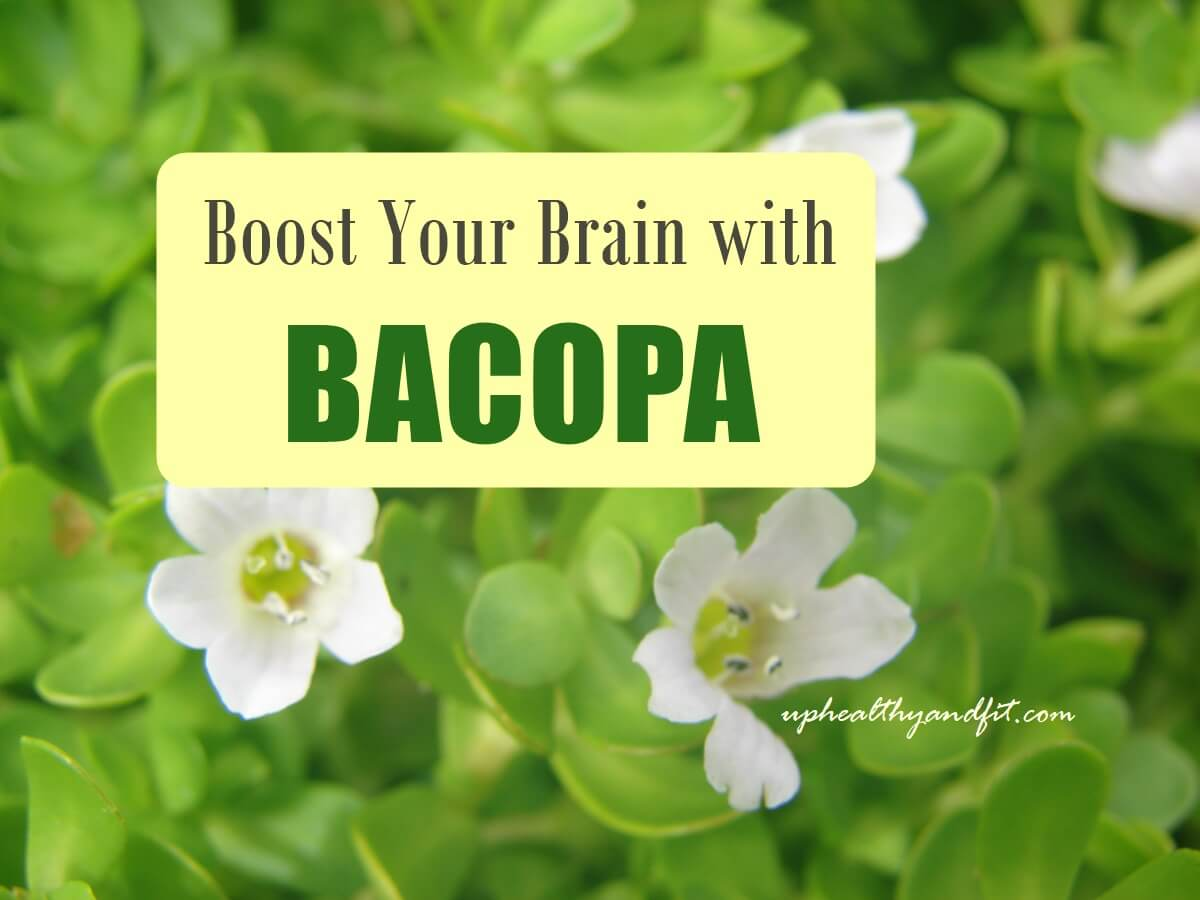 Bacopa-monnieri-health-benefits-and-side-effects
