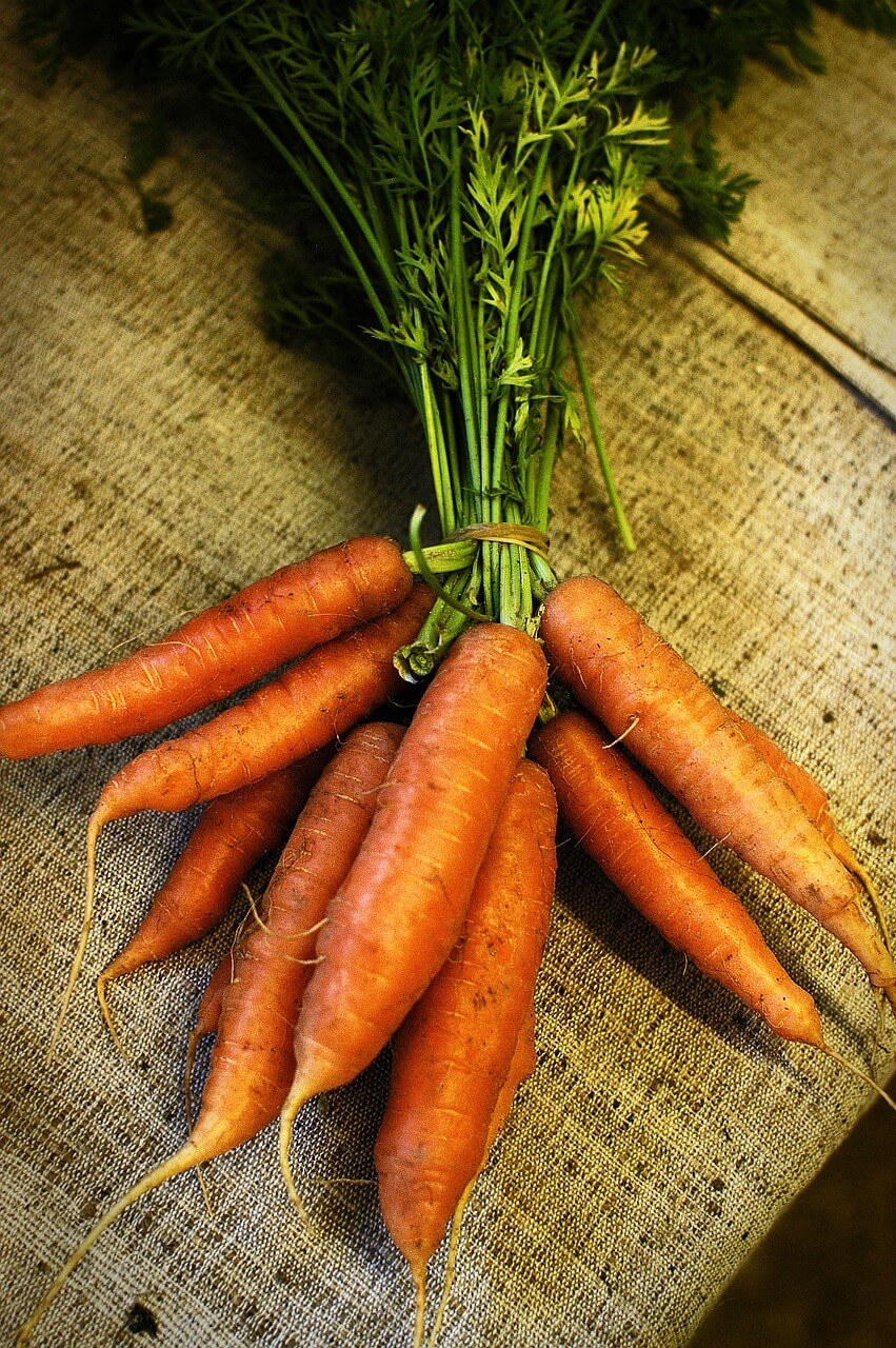 carrots-for-a-perfect-tan-and-a-healthy-skin
