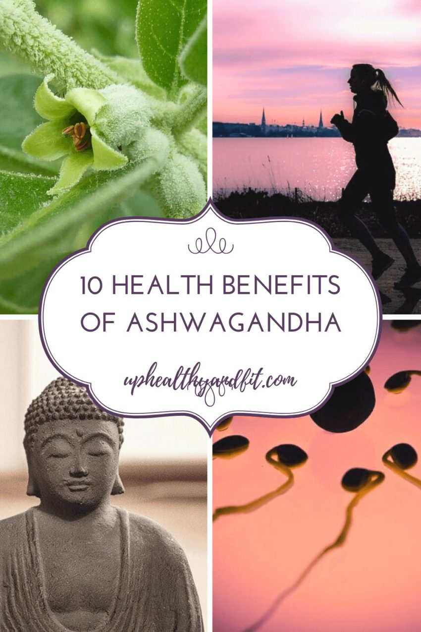 what are the health benefits of ashwagandha