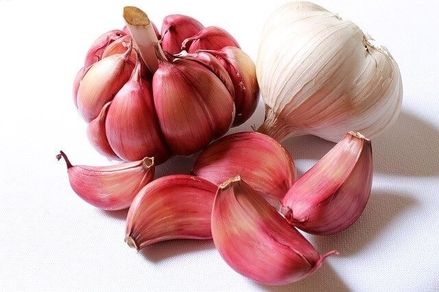 garlic-and-immune-system